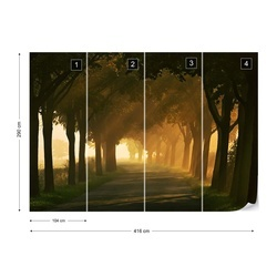 Sunbeams On The Road Photo Wallpaper Mural