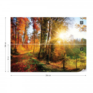 Sunrise In Autumn Forest Photo Wallpaper Wall Mural
