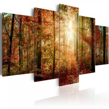 Tablou - Autumn Wilderness