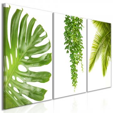 Tablou - Beautiful Palm Trees (3 Parts)