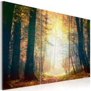 Tablou - Beauty of autumn - triptych