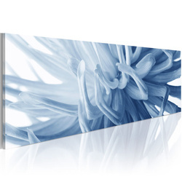 Tablou - Canvas print – Flover petals