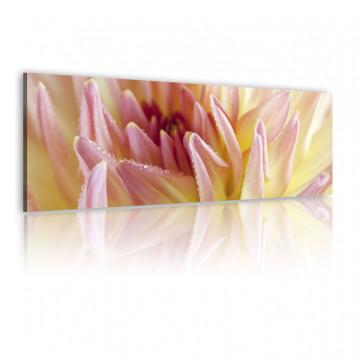 Tablou - Canvas print - Sweet flowers