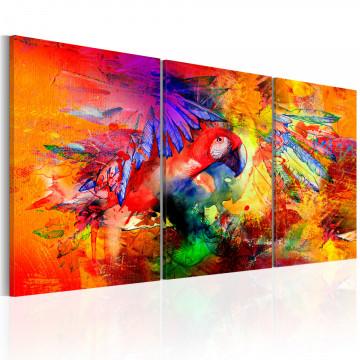 Tablou - Colourful Parrot