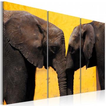Tablou - Elephant kiss