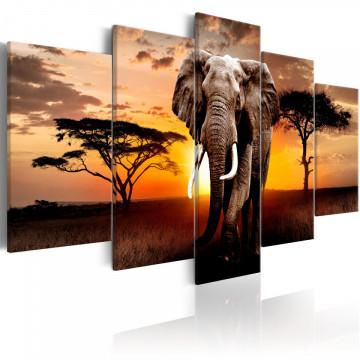 Tablou - Elephant Migration