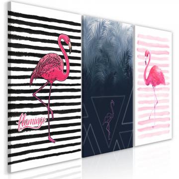 Tablou - Flamingos (Collection)