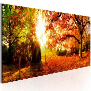 Tablou - Magic of Autumn