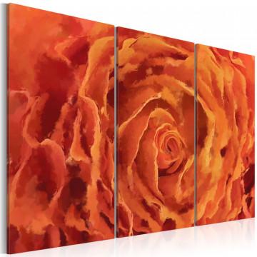 Tablou - Rose in orange - triptych
