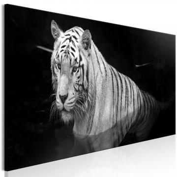 Tablou - Shining Tiger (1 Part) Black and White Narrow