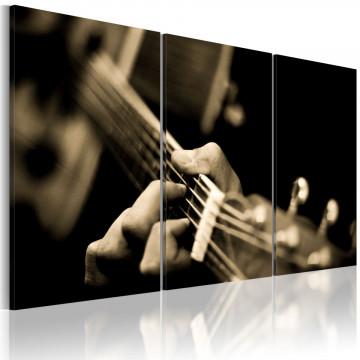 Tablou - The magic sound of a guitar
