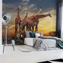 The Giraffes Photo Wallpaper Mural