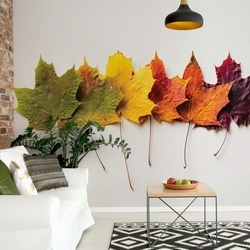 Autumn Leaves Photo Wallpaper Wall Mural