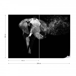 Black And White Elephant Photo Wallpaper Wall Mural