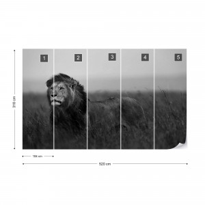 Black And White Lion Photo Wallpaper Wall Mural
