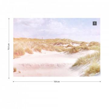 Dune Paradise Faded Vintage