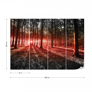 Forest Landscape Red Light Photo Wallpaper Wall Mural