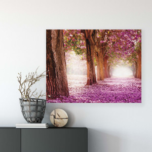Forest & Trees Canvas Photo Print
