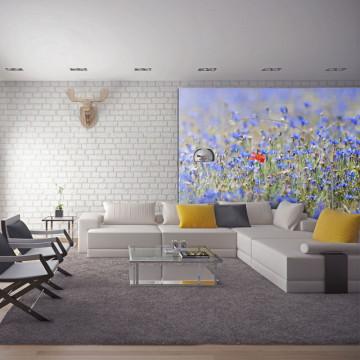 Fototapet - A sky-colored meadow - cornflowers