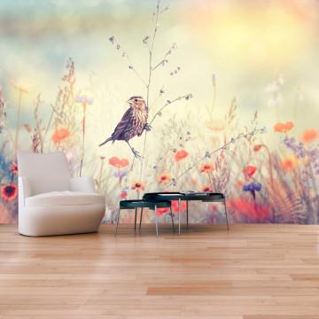Fototapet autoadeziv - Field Bird
