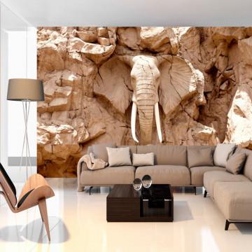 Fototapet autoadeziv - Stone Elephant (South Africa)