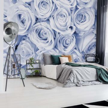Fototapet - Buchet de Trandafiri – Albastru