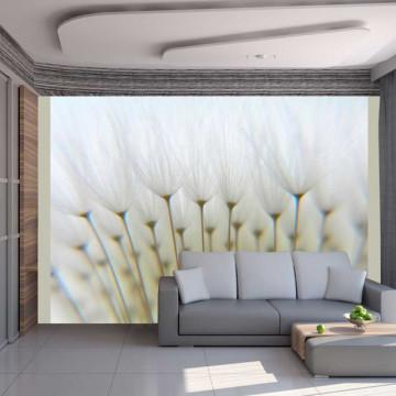 Fototapet - Dandelion forest