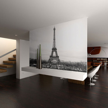 Fototapet - Paris: black and white photography