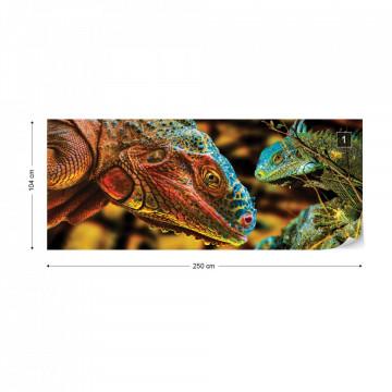 Iguanas Photo Wallpaper Wall Mural
