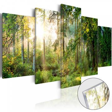 Imagine pe sticlă acrilică - Green Sanctuary [Glass]