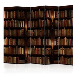 Paravan - Bookshelves II [Room Dividers]