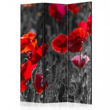 Paravan - Red Poppies [Room Dividers]