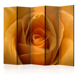 Paravan - Yellow rose – a symbol of friendship II [Room Dividers]