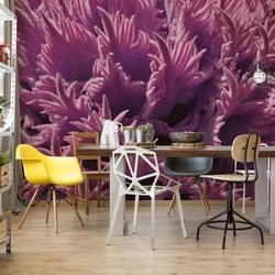 Pink Organic Texture Photo Wallpaper Wall Mural