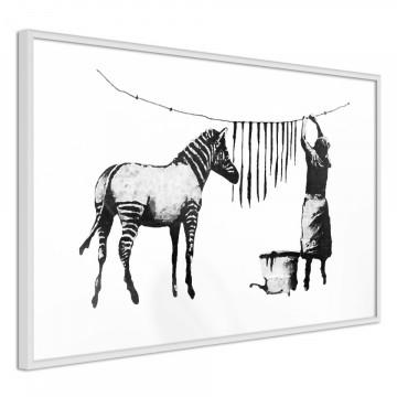 Poster - Banksy: Washing Zebra Stripes