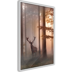 Poster - Forest Seclusion