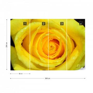 Rose Flower Yellow Photo Wallpaper Wall Mural