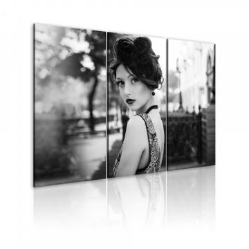 Tablou - An elegant woman, retro style