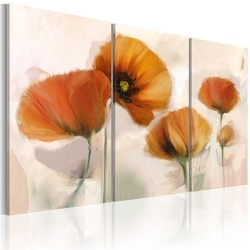 Tablou - Artistic poppies - triptych