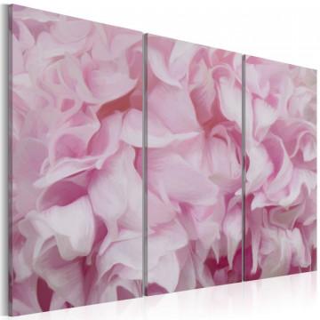 Tablou - Azalea in pink