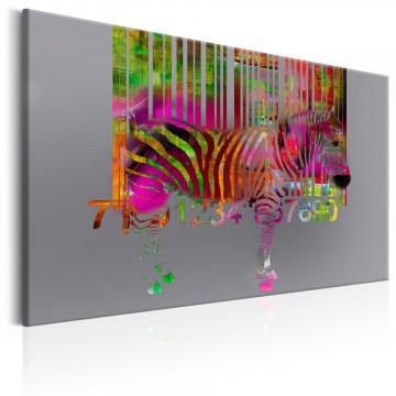 Tablou - Code of Zebra