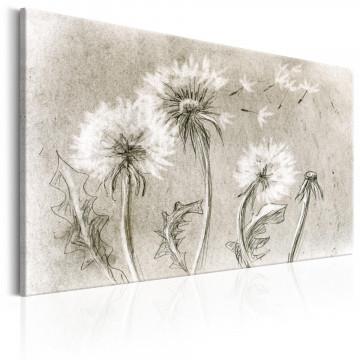 Tablou - Dandelions (Pencil Artwork)