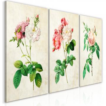 Tablou - Floral Trio (Collection)