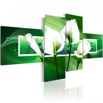 Tablou - Green water arums
