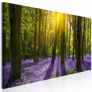 Tablou - Hyacinth Field (1 Part) Narrow
