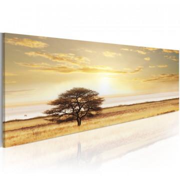 Tablou - Lonely tree on savannah