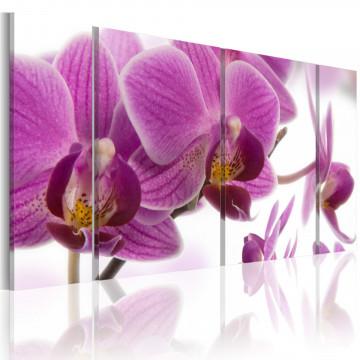 Tablou - Marvelous orchid