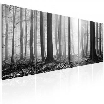 Tablou - Monochrome Forest