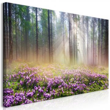 Tablou - Purple Meadow (1 Part) Wide