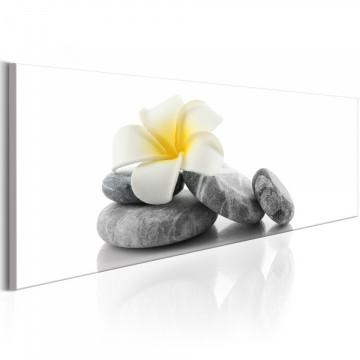 Tablou - White Lotus